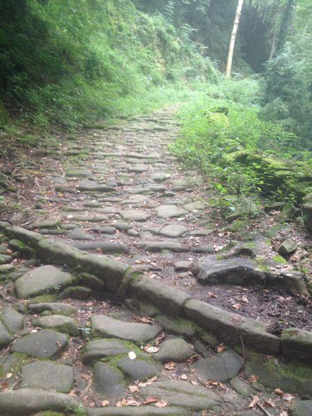 Chemin ombragé vers Olot
